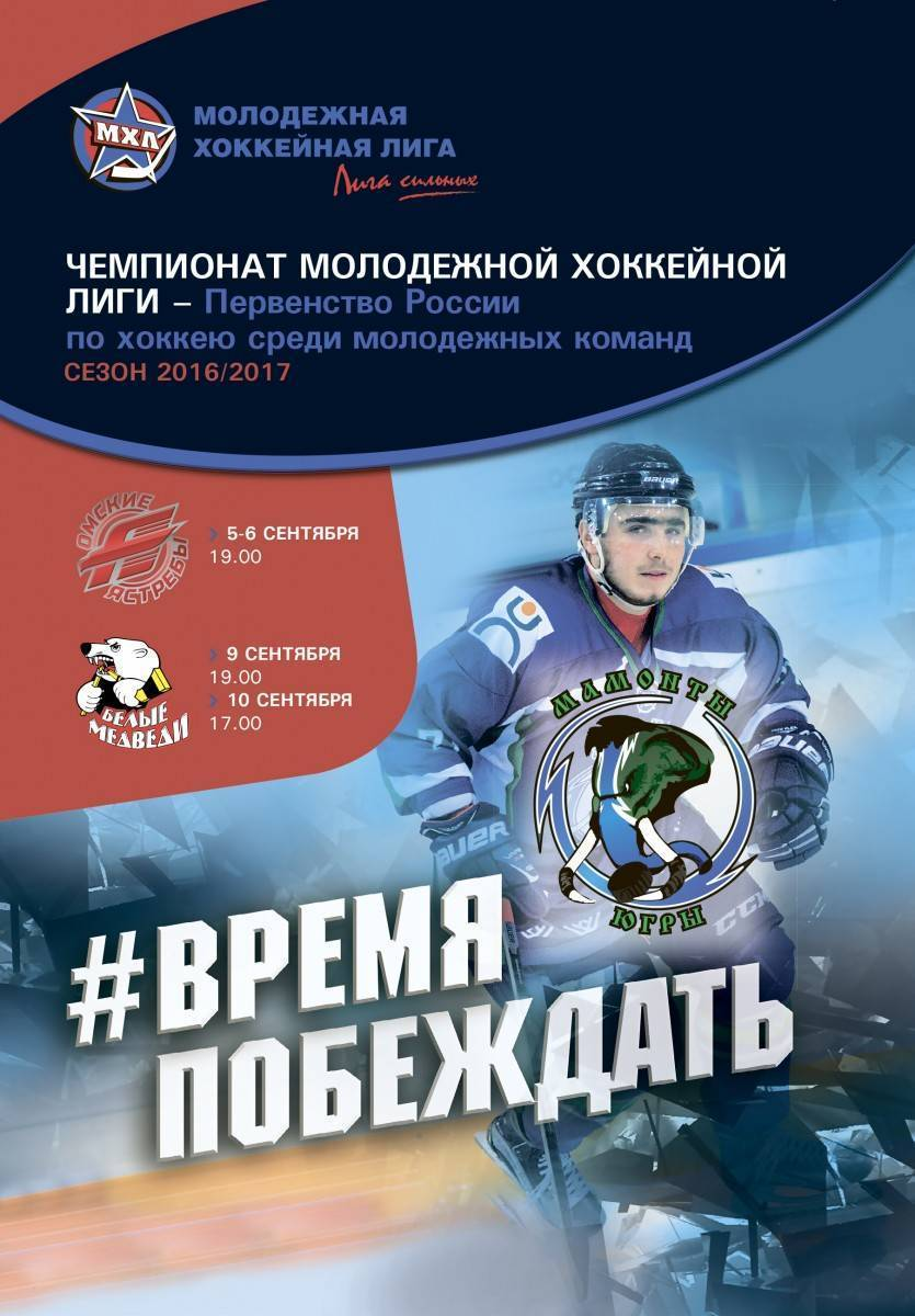 омские медведи 31,03,2017 ястребы-белые 4 прогноз матч